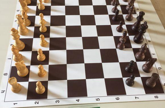 scacchi zx sito 2 (1)
