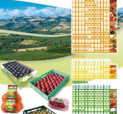 le stagioni della frutta e delle verdure