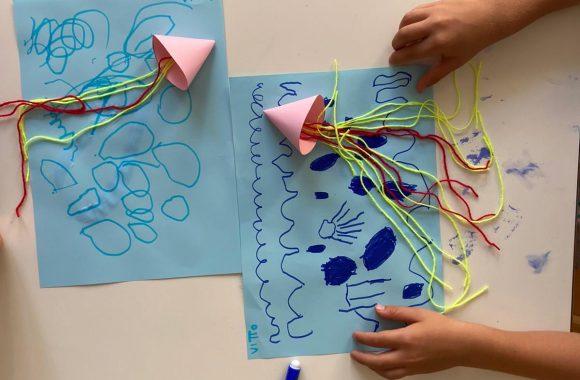 meduse (4)